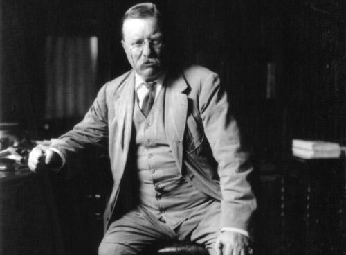 Teddy Roosevelt Photo Gallery image